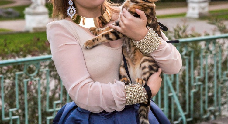 amely rose wearinf a satin midi skirt and the bengalkitten cat walk