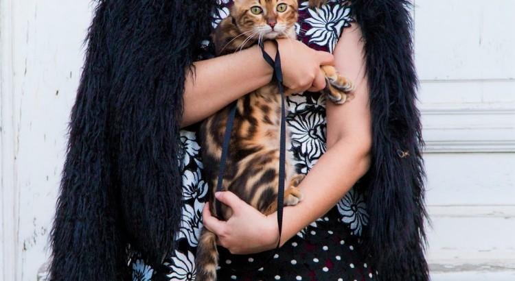 Amely Rose und die Bengalkatze Cat Walk.