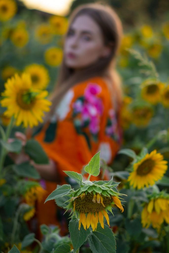 amely, rose, amelyrose, fashionblogger, köln, sonnenblume, sunflower,